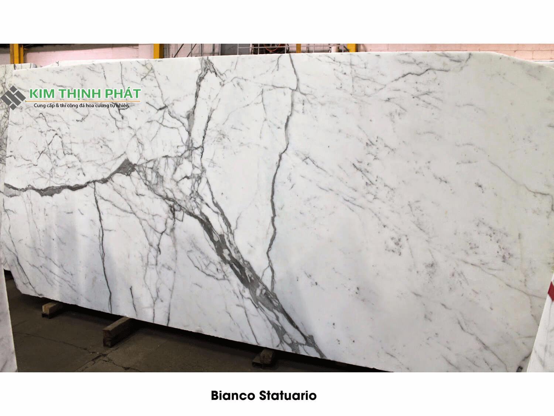 ấm đá Marble trắng Carrara