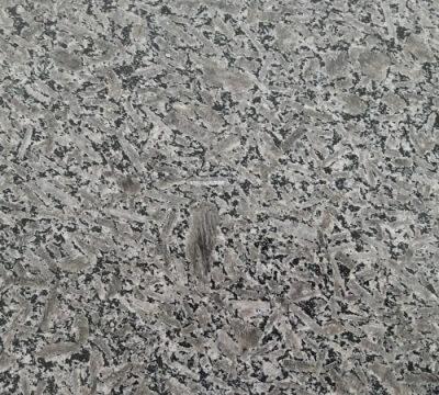 Đá Granite Xanh Tằm