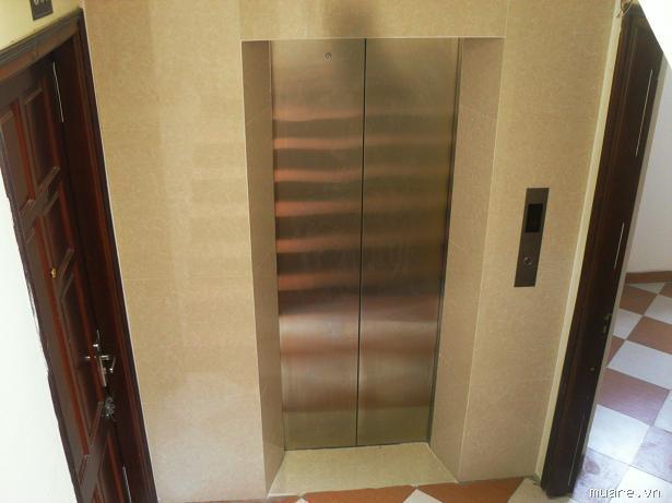 Ốp đá thang máy